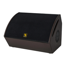 "L-12 12"" Coaxial Stage Monitor Speaker"