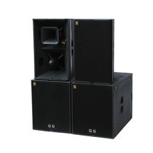 T24N Dual 12 Inch Loudspeaker With Excellent Speech Intelligibility And Musicality